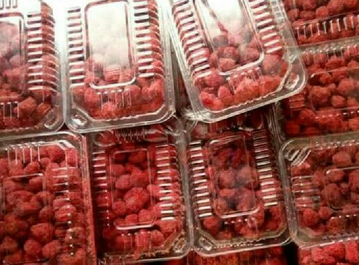 strawberry containers, robin packaging